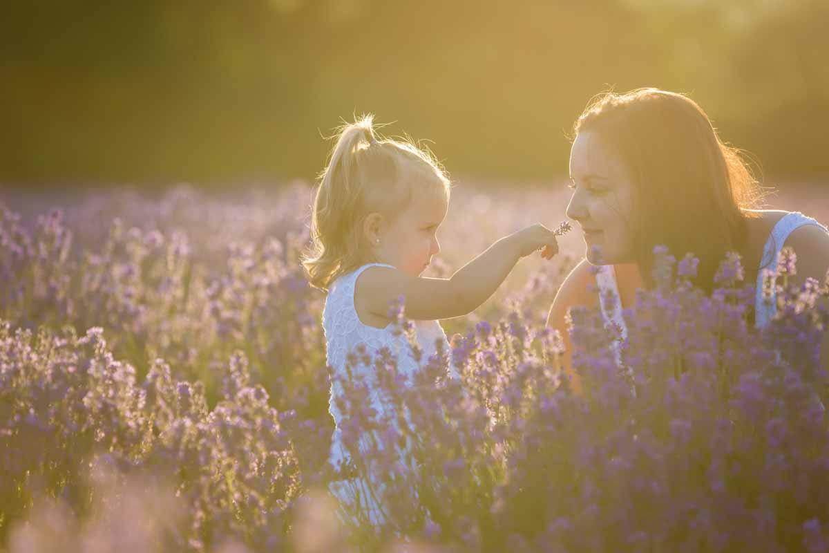 Maison Lavande family portrait session lavender fields – 019