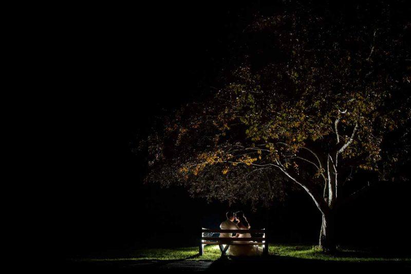 Silhouette under tree